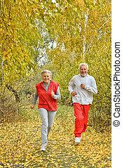 Happy fit senior couple exercising