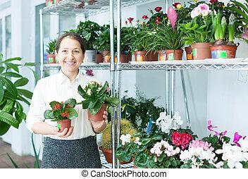 Happy florist with kalanchoe