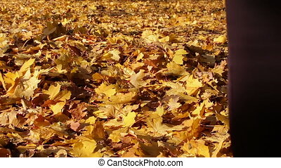 Happy girl talking on a carpet of yellow leaves in the autumn forest.