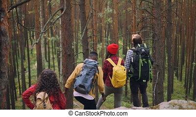 Happy group of adventurous hikers is standing on top of rock...