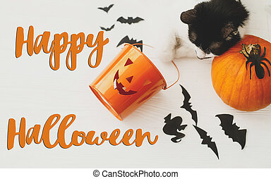 Happy Halloween text on cat paws holding Jack o lantern candy pail on white background with pumpkin, bats and spider decorations, top view. Trick or treat. Handwritten sign, seasonal greeting card