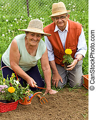 Happy healthy seniors gardening - planting flowers together
