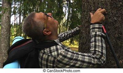 Happy Hiker walks to the tree