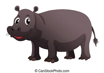 Happy hippo on white background