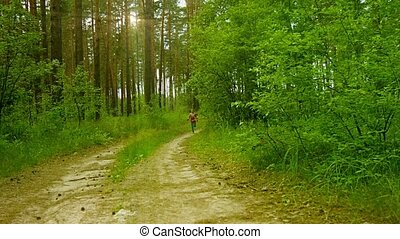 Happy kid running along the road in the sunny summer pine forest