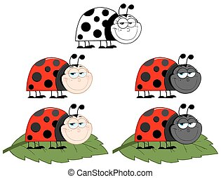 Happy Ladybug. Collection Set