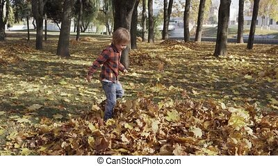 Happy little boy playing with autumn leaves throwing leaves in park