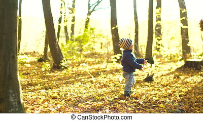 Happy little boy playing with autumn leaves throwing leaves in the forest