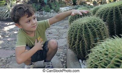 happy little boy sitting in the park