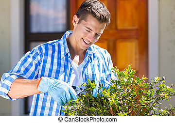 man pruning a shrub by house front door - happy man pruning...