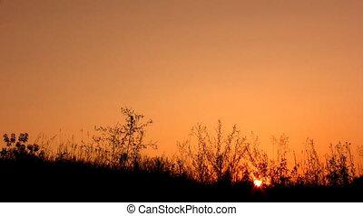 happy man silhouette on sunset sky