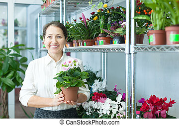 woman with auricula (Primula) plant - Happy mature woman...