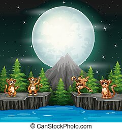 Happy monkeys in night landscape