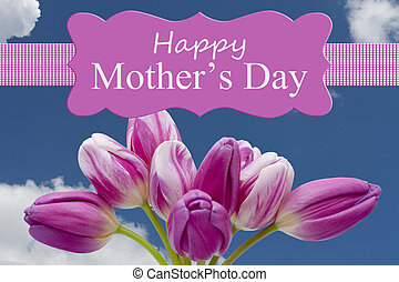 Happy Mother's Day Greeting, Some tulips with text Happy Mother's Day with sky background