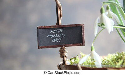 Happy Mother's Day idea. First spring flowers, snowdrops and text Happy Mother's Day.