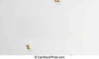 happy new 2016 year crackers stop motion animation