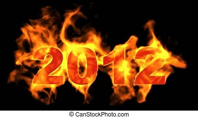 happy new year 2012,burning 2012 wi