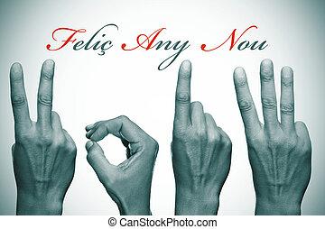 happy new year 2013 in catalan - felic any nou, happy new...