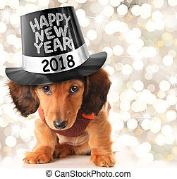 Happy New Year 2018 puppy - Dachshund puppy wearing a Happy...