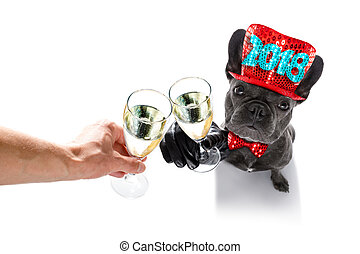 happy new year dog celberation - french bulldog dog...