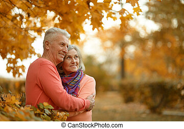 Happy older couple walking in the park