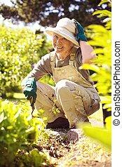 Happy older woman gardening in backyard looking at camera smiling