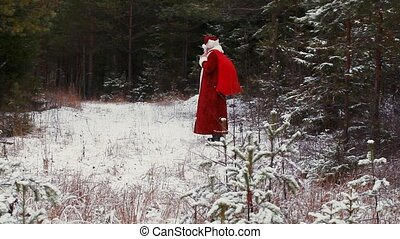 Happy Santa Claus in the snowy wood