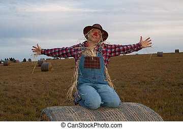 Happy scarecrow on hay bale.