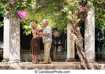 Happy senior couple dancing latin american dance for fun -...