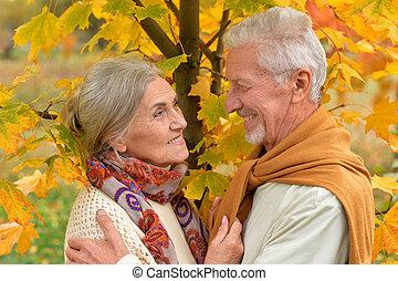 happy Senior couple  in park