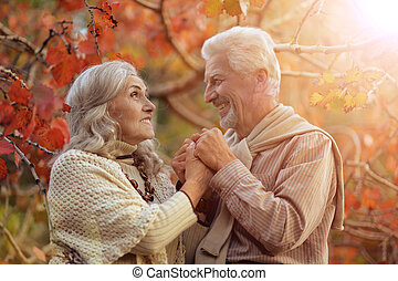 happy Senior couple  in park