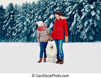 Happy smiling mother and son child walking together with white Samoyed dog in snowy winter day on forest background