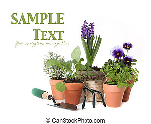 Happy Spring Time Herb Gardening on White Background With ...