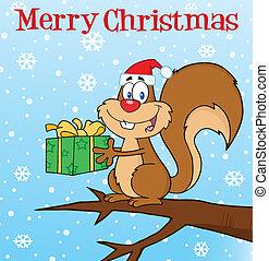 Happy Squirrel With Santa Hat