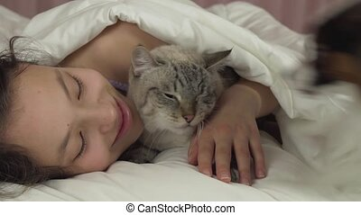 Happy teen girl playing with dog Papillon and Thai cat in bed stock footage video