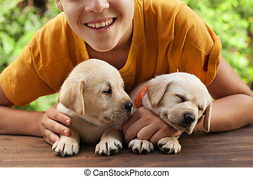 Happy teenager boy posing with his cute labrador puppies