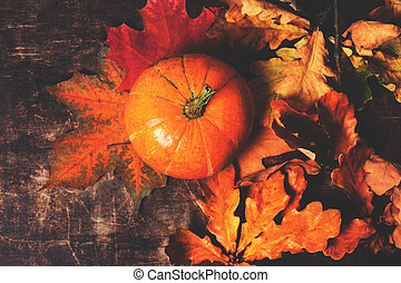 Happy Thanksgiving background with pumpkins and autumn leaves with copy space