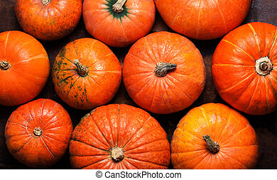 Happy Thanksgiving Card - pumpkins background top view