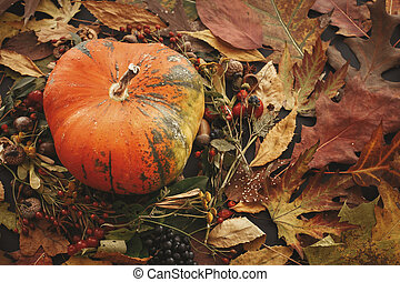 Happy Thanksgiving concept. Pumpkin in autumn leaves wreath, berries, nuts, acorns, flowers, herbs on dark background. Seasons greetings. Space for text. Halloween
