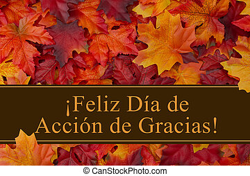 Happy Thanksgiving Greeting in Spanish