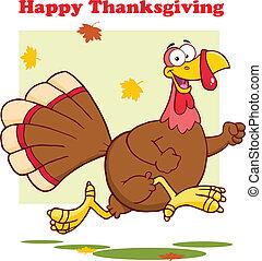 Greeting With Turkey Bird Running