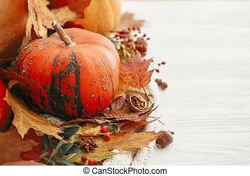 Happy Thanksgiving. Pumpkins with fall leaves, berries, cinnamon, anise, acorns, nuts, , autumn flowers on white knitted sweater. Hygge lifestyle, cozy autumn mood.