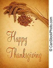 Happy Thanksgiving Wheat - Thanksgiving Greetings, ...