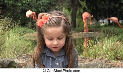 Happy Toddler near Flamingos