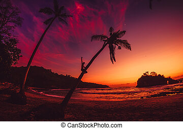 Happy traveler man on coconut palm and bright sunset or sunrise at tropical beach with ocean