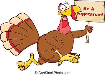 Turkey Bird Character Running