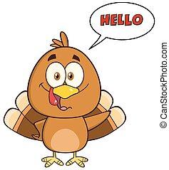 Happy Turkey Bird Character