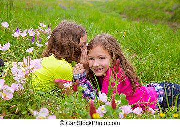 happy twin sister girls playing whispering ear in meadow