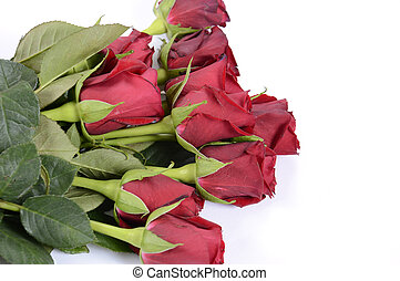 Happy Valentines Day bouquet of red roses on white background.
