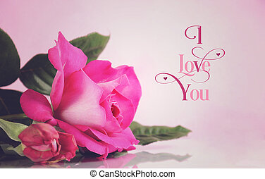 Happy Valentines Day greeting with retro vintage style pink rose with I Love You sample text greeting message.